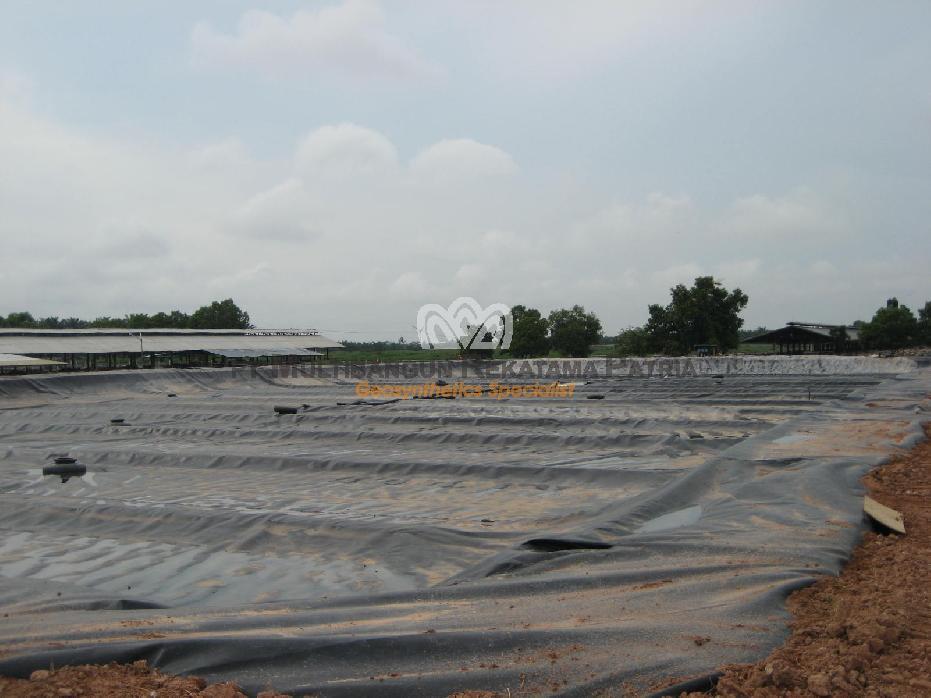 WM- Biogas Pond Lampung