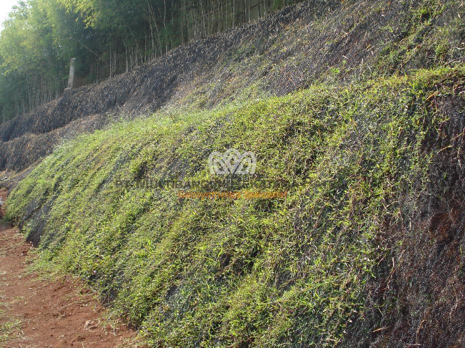 Erosion Control di Bumi Serpong Damai