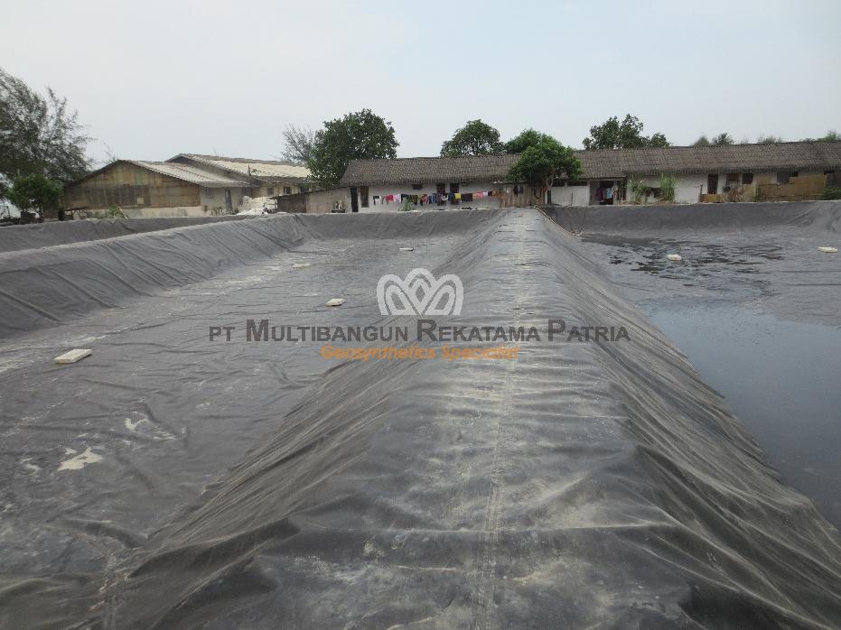 Kolam Tambak Udang Brastagi Medan 06